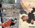 Urfa'da Töre Cinayeti Aydınlatıldı