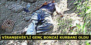 Viranşehir'li Genç Bonzai Kurbanı Oldu