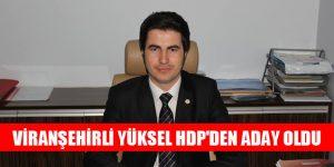 Viranşehirli Yüksel HDP'den Aday Oldu