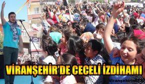 Viranşehir Mustafa Ceceli Konseri İle Coştu