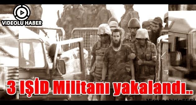 3 IŞİD Militanı yakalandı..