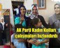 AK Parti Kadın Kolları çalmadık kapı bırakmıyor