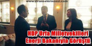 HDP Urfa Milletvekilleri Enerji Bakanıyla Görüştü