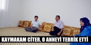 Kaymakam Citer,Atatürk Mahallesini ziyaret etti