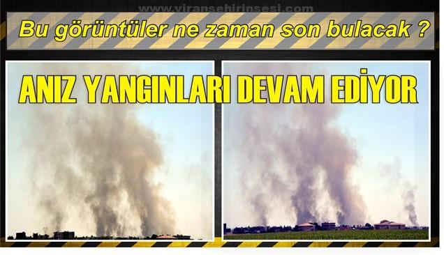 Viranşehir'de Anız yangınları devam ediyor..