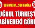 Tuğrul Türkeş'in kabinedeki görevi