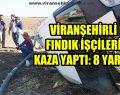 Viranşehirli Fındık İşçileri Kaza Yaptı: 8 Yaralı