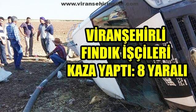 viransehir-kaza-haberi-111