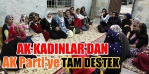 AK Parti Kadın Kolları'ndan seçim çalışması