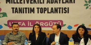 HDP Urfa Adayları tanıtıldı