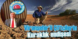 Viranşehir'li Çiftçilerin Kuraklık endişesi