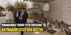 Viranşehirli Tavuk Yetiştiricisine Kaymakam Citer'den destek