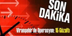 Viranşehir'de Operasyon: 15 Gözaltı