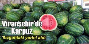 Viranşehir'de Karpuz Sezonu açıldı