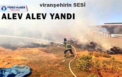 Şanlıurfa'da büyük yangın! Saatler sürdü