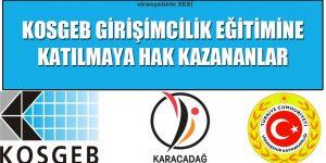 Viranşehir Kaymakamlığı KOSGEB Girişimcilik Eğitimine Katılmaya Hak Kazananların Tam Listesi