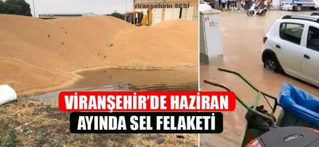 Viranşehir'de Haziran Ayında Sel Felaketi Videolu