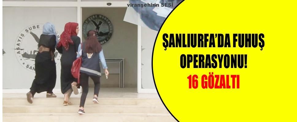 Şanlıurfa'da fuhuş operasyonu! 16 gözaltı
